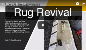 Rug Revival